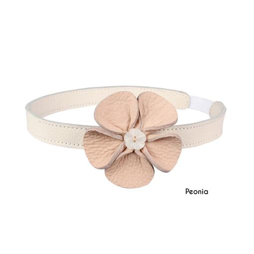 Fascia peonia